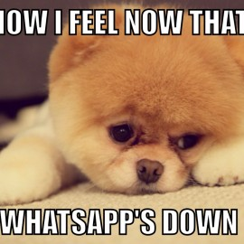 Mean while Whatsapp goes down